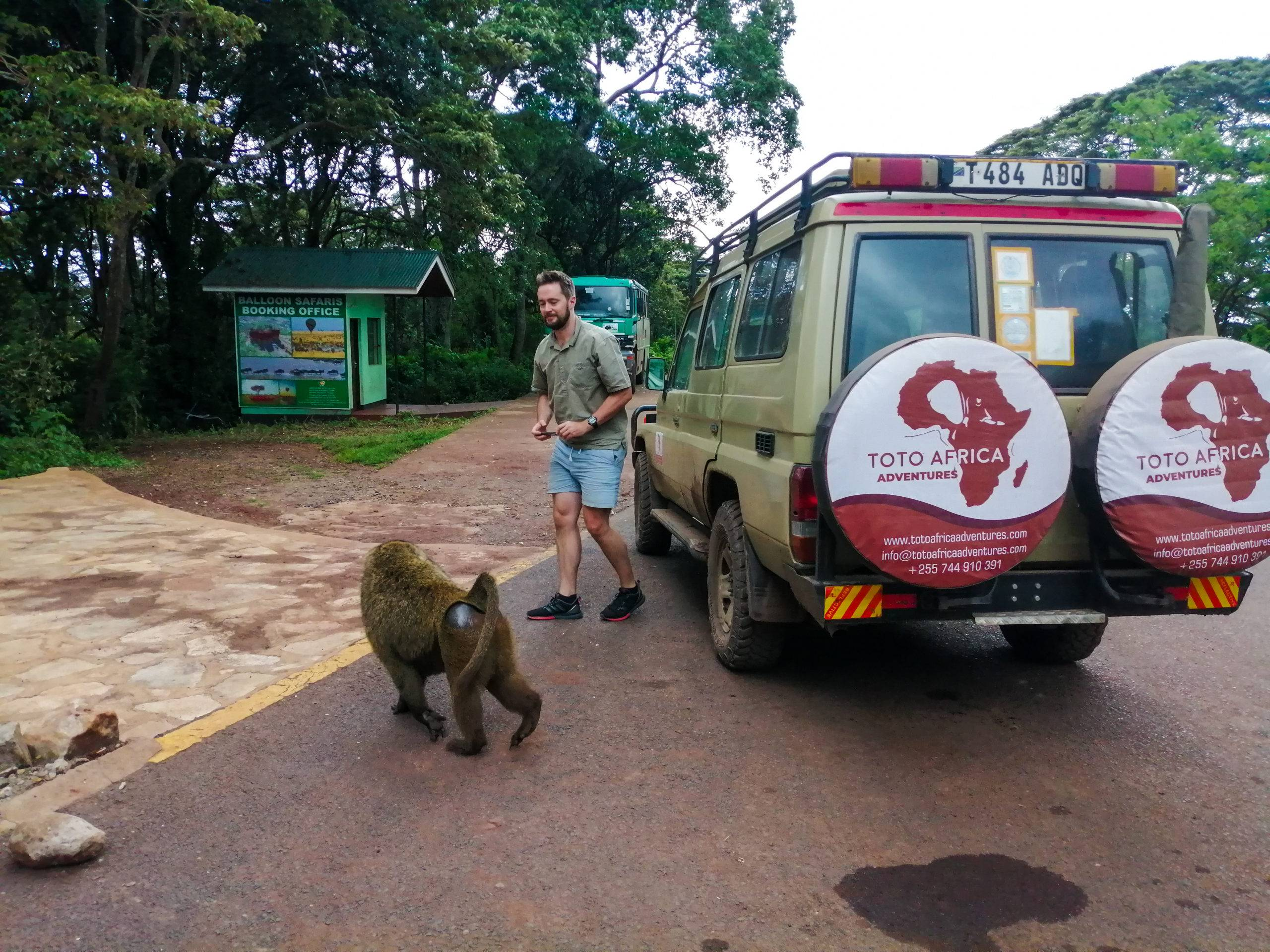 African Safari Holidays | Kilimanjaro climbing tours and packages | Tanzania Family Safari |Best and Recommended tour operator in Tanzania