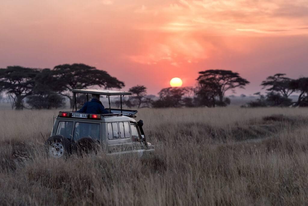 Game Drive Viewing in Serengeti
