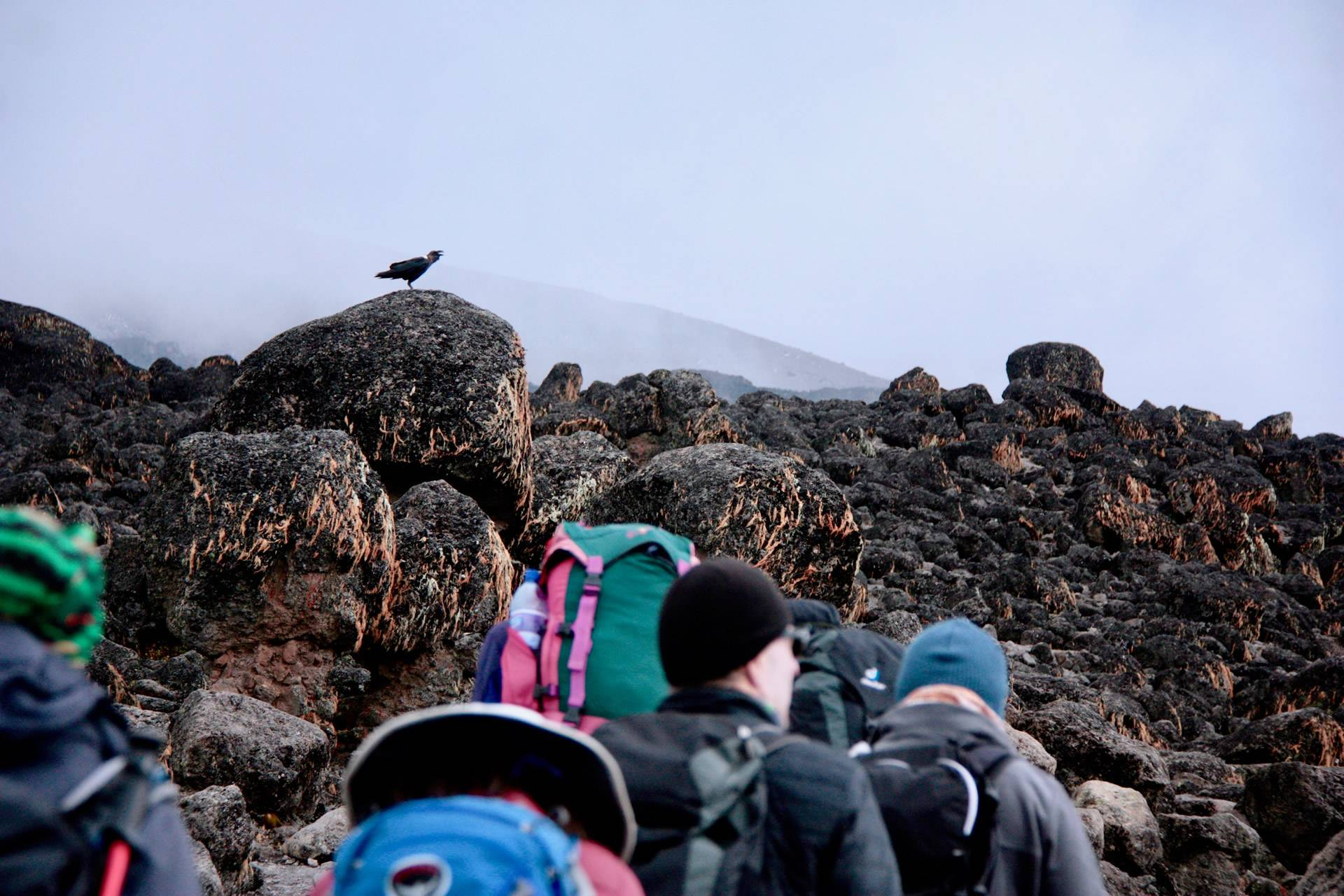 Best Kilimanjaro Climbing Package