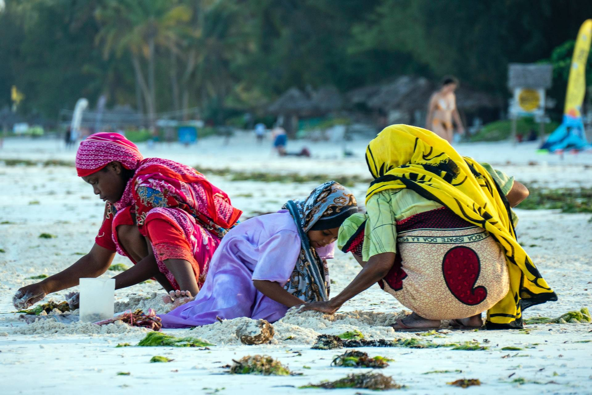 Zanzibar Beach Holiday Tours and Packages