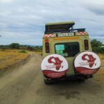 Best Tanzania Luxury Safari Holiday