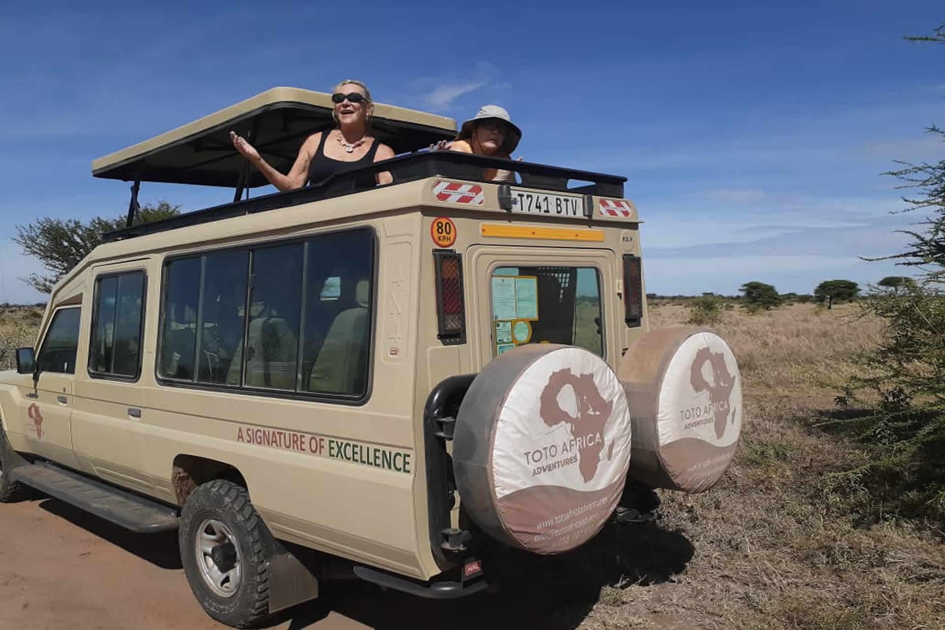 Tanzania Lodge Safari Tours