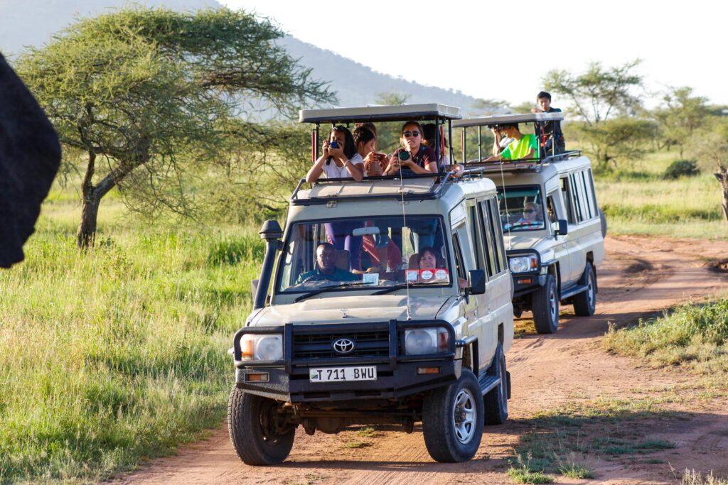 Amazing Family Safari in Tanzania
