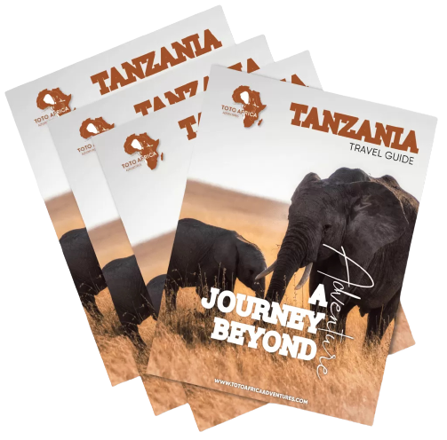 Budget and Affordabl Tours in Tanzania